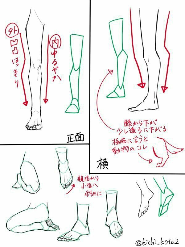 Pin By Rim On Pinterest Drawings Anatomy And Art