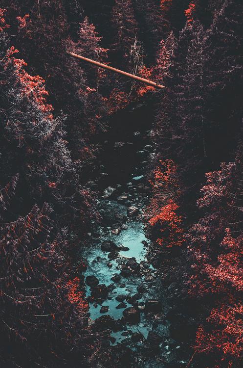 pikxchu: DSC_5362-1 by DeepLovePhotography #photoscenery
