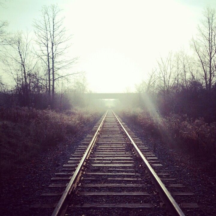 morning tracks