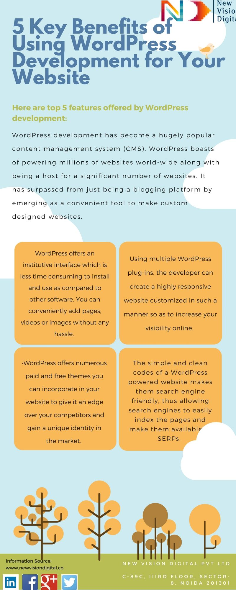 New Vision Digital Pvt Ltd is a Digital Marketing Company