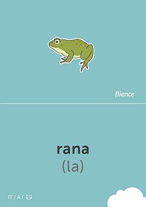 Rana #CardFly #flience #animals #italian #education #flashcard #language