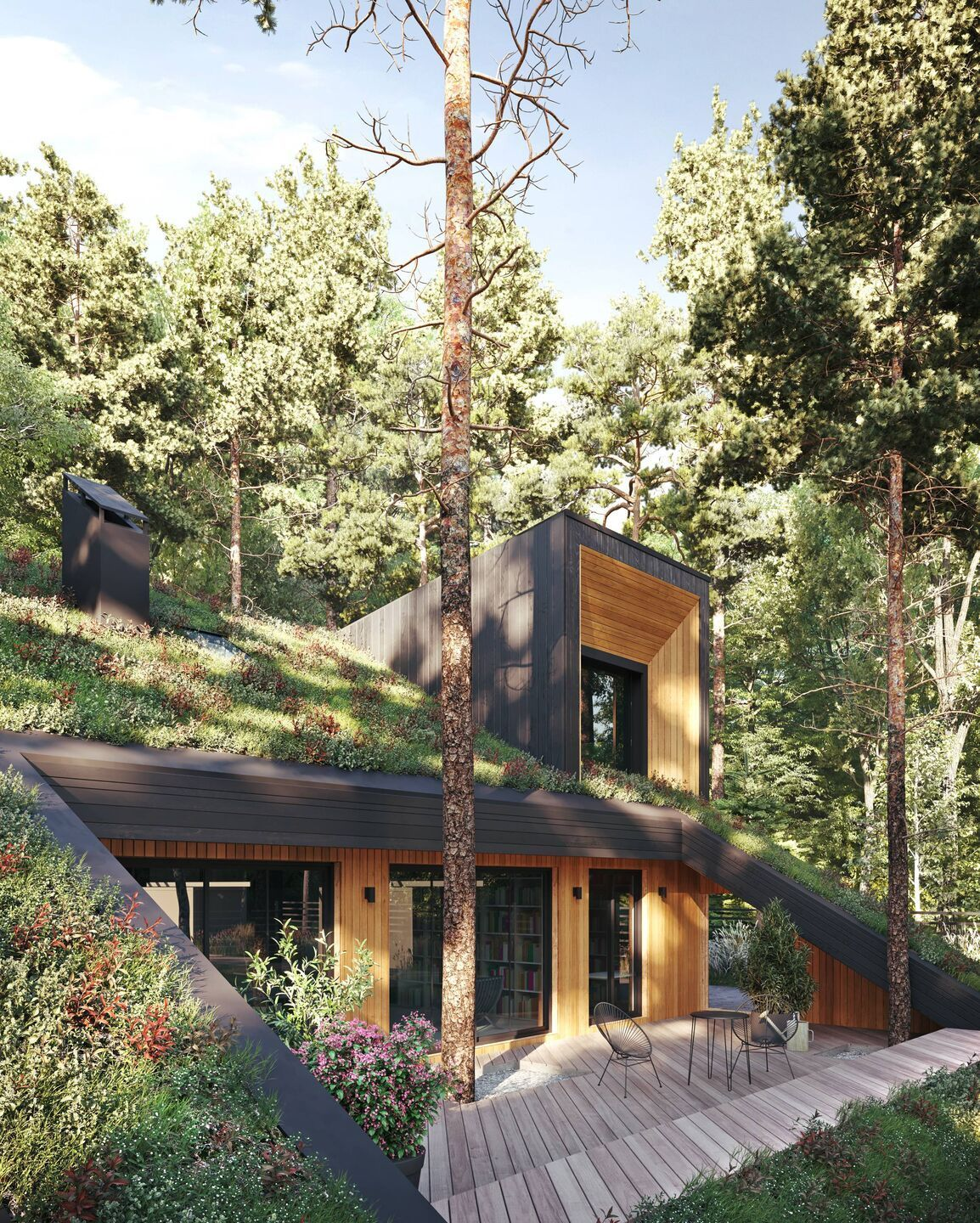 Lights, windows, cedar, building around the trees... and to have a green roof... with a ramp, at that!