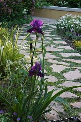 garden #modern garden design #garden decorating #garden design #garden design #garden interior design| http://gardeninteriordesign.blogspot.com