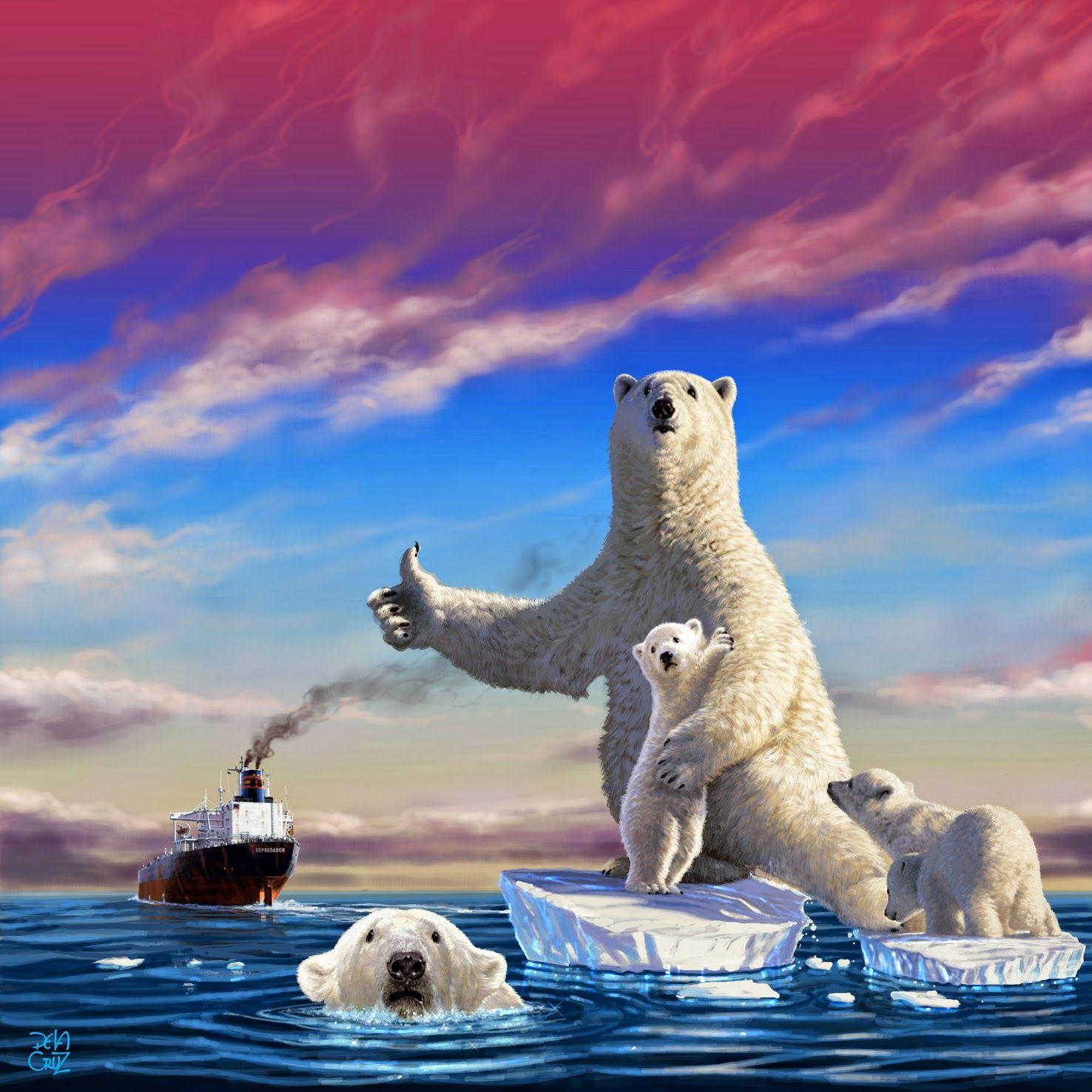 MIS MEJORES FOTOS : Animales en peligro de extinción, el Oso polar.