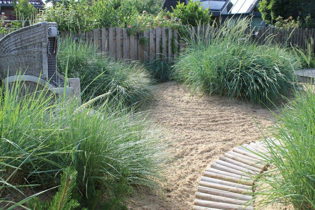 Pin Von Birte Noll Auf Garten Dunengarten Grasergarten Strandgarten Kustengarten Gartengestaltung Garten Garten Anlegen