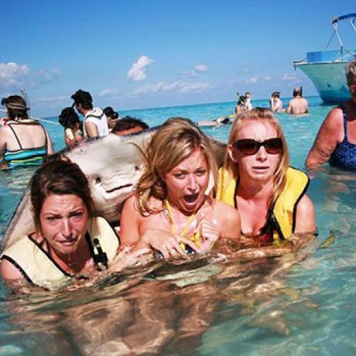 Todo esta listo.  Es la foto ideal en el lugar elegido  Disparamos pero no...    Alguien la arruina #gracioso #divertido #selfie #photobomb #bomba #foto #photobombs