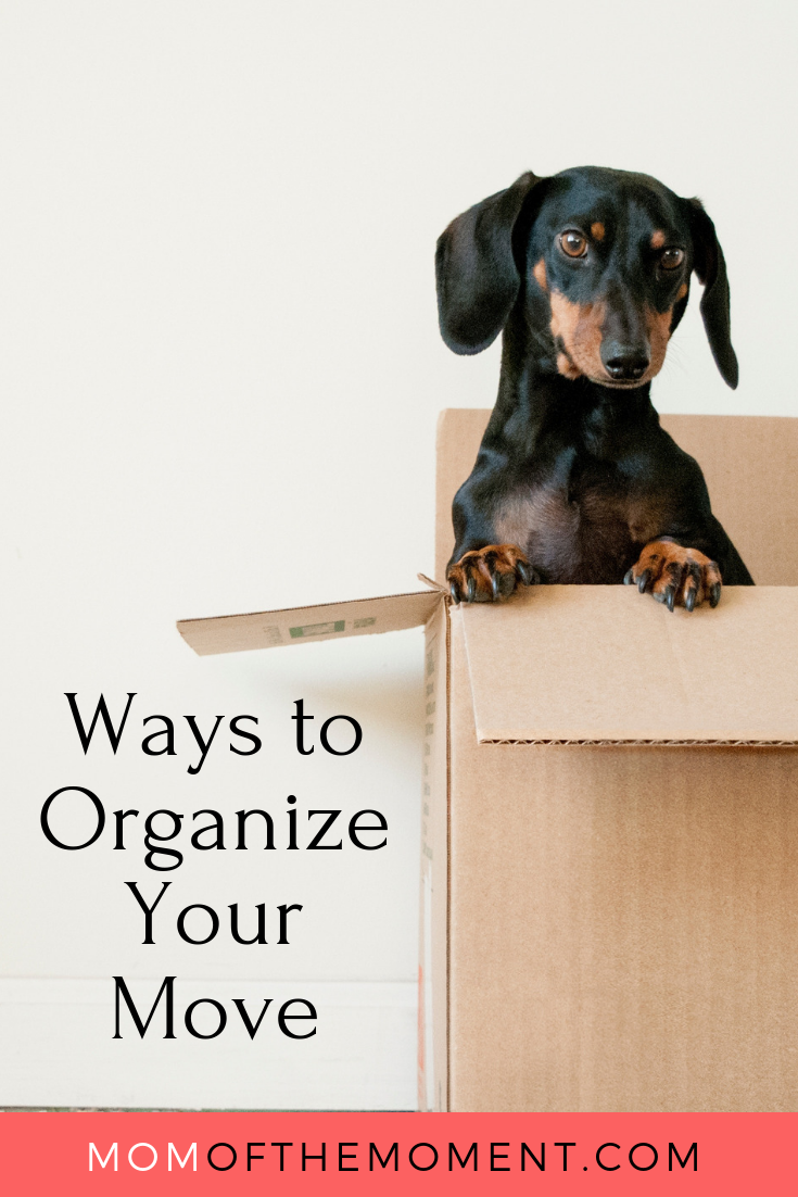 Ways To Organize Your Move Packing To Move Organization Pet Travel
