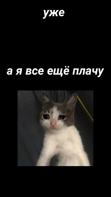 Какой ты Уебок - Yo Dawg | Meme Generator | 1448x815
