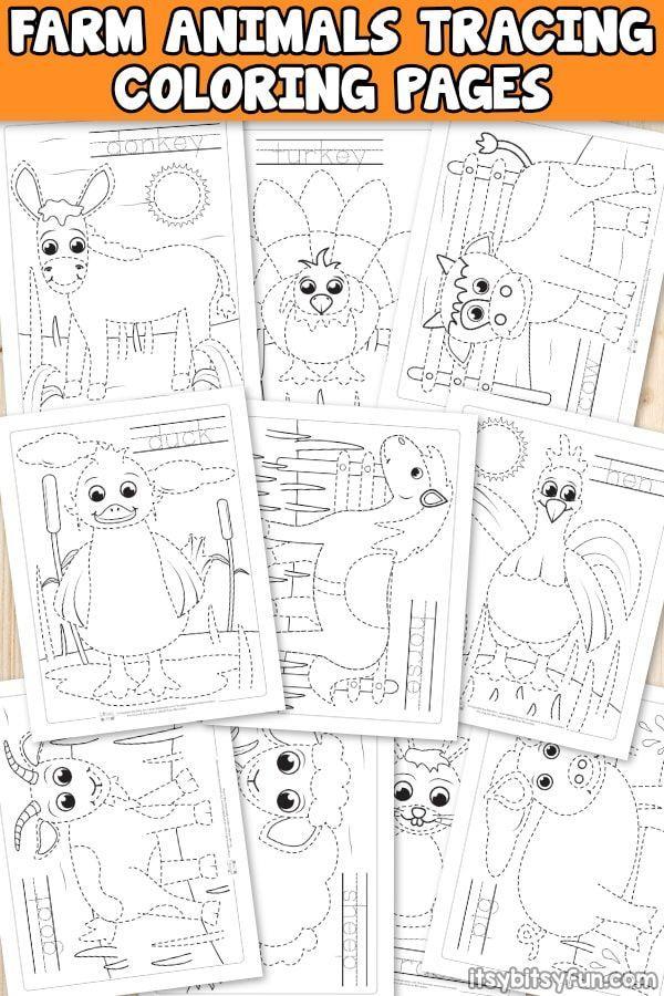 Farm Animals Tracing Coloring Pages | Djur svenska | Pinterest