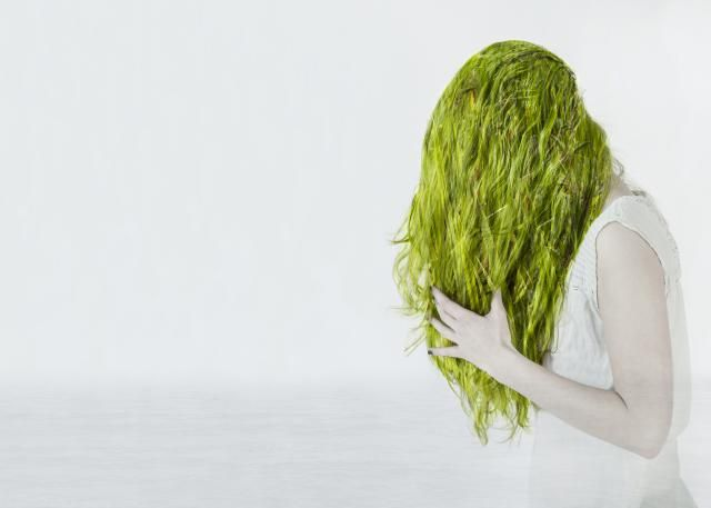 Why The Swimming Pool Can Turn Your Hair Green Chlorine Green