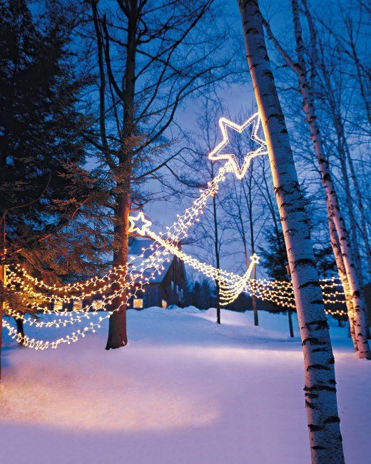 Genius Outdoor Christmas Light Ideas The Garden Glove Outdoor Christmas Outdoor Christmas Lights Outdoor Christmas Decorations