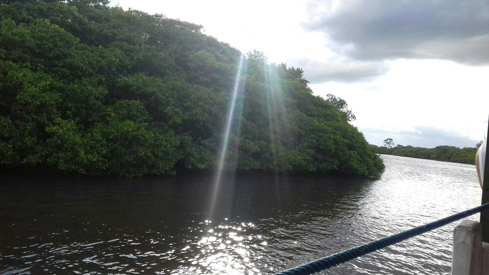 Margem do Rio São João iluminada - fim de tarde