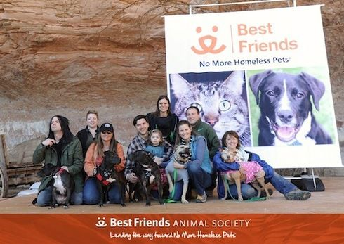 Six Dogs Rescued From Michael Vicks Dogfighting Ring Reunited This