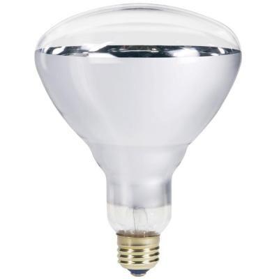 Philips 250 Watt 120 Volt Incandescent Br40 Heat Lamp Light Bulb 416743 The Home Depot Light Bulb Infrared Light Bulb Bathroom Heat Lamp