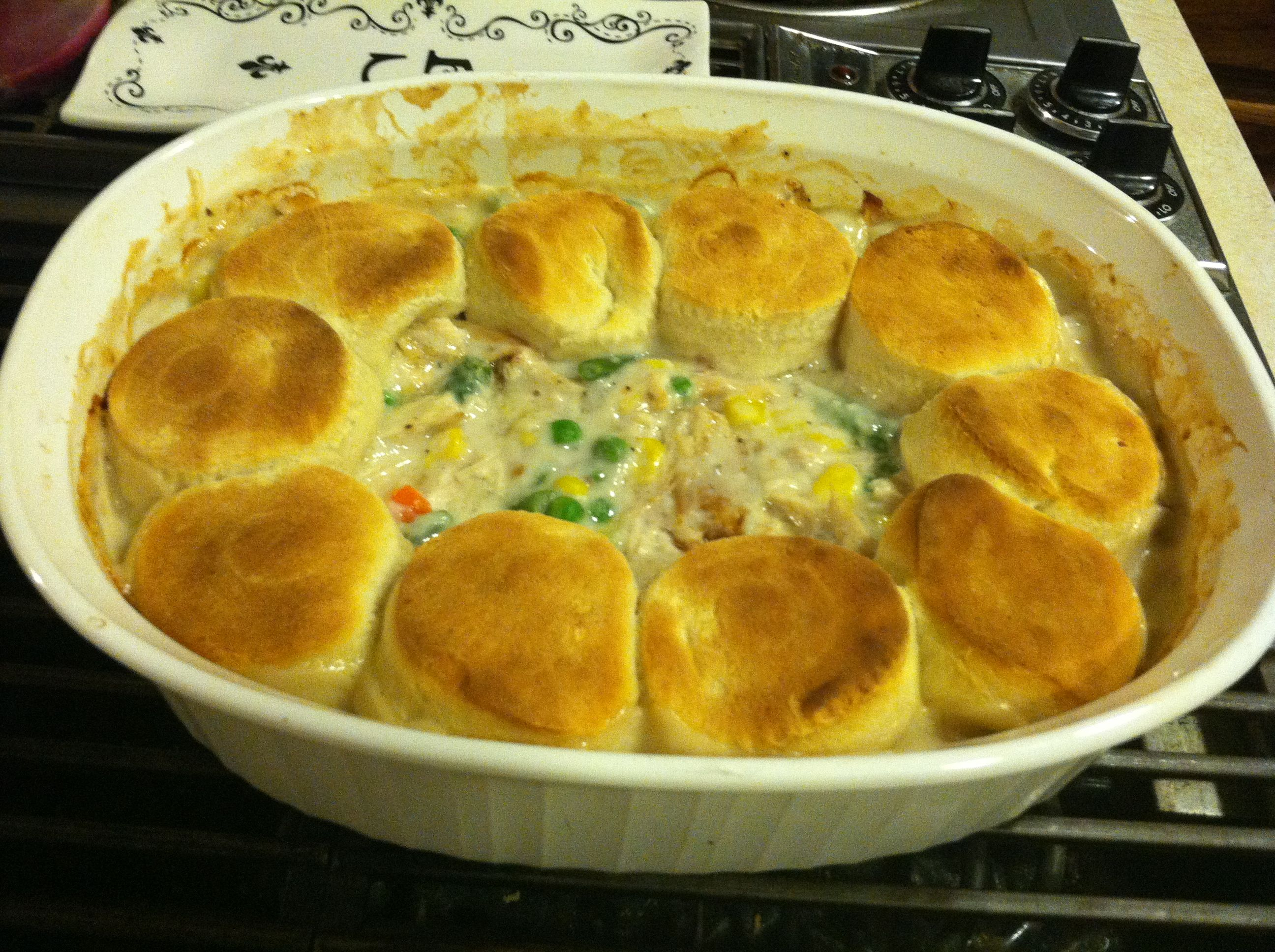 Another Pinterest Success.. Chicken Pot Pie (with leftover turkey too!)