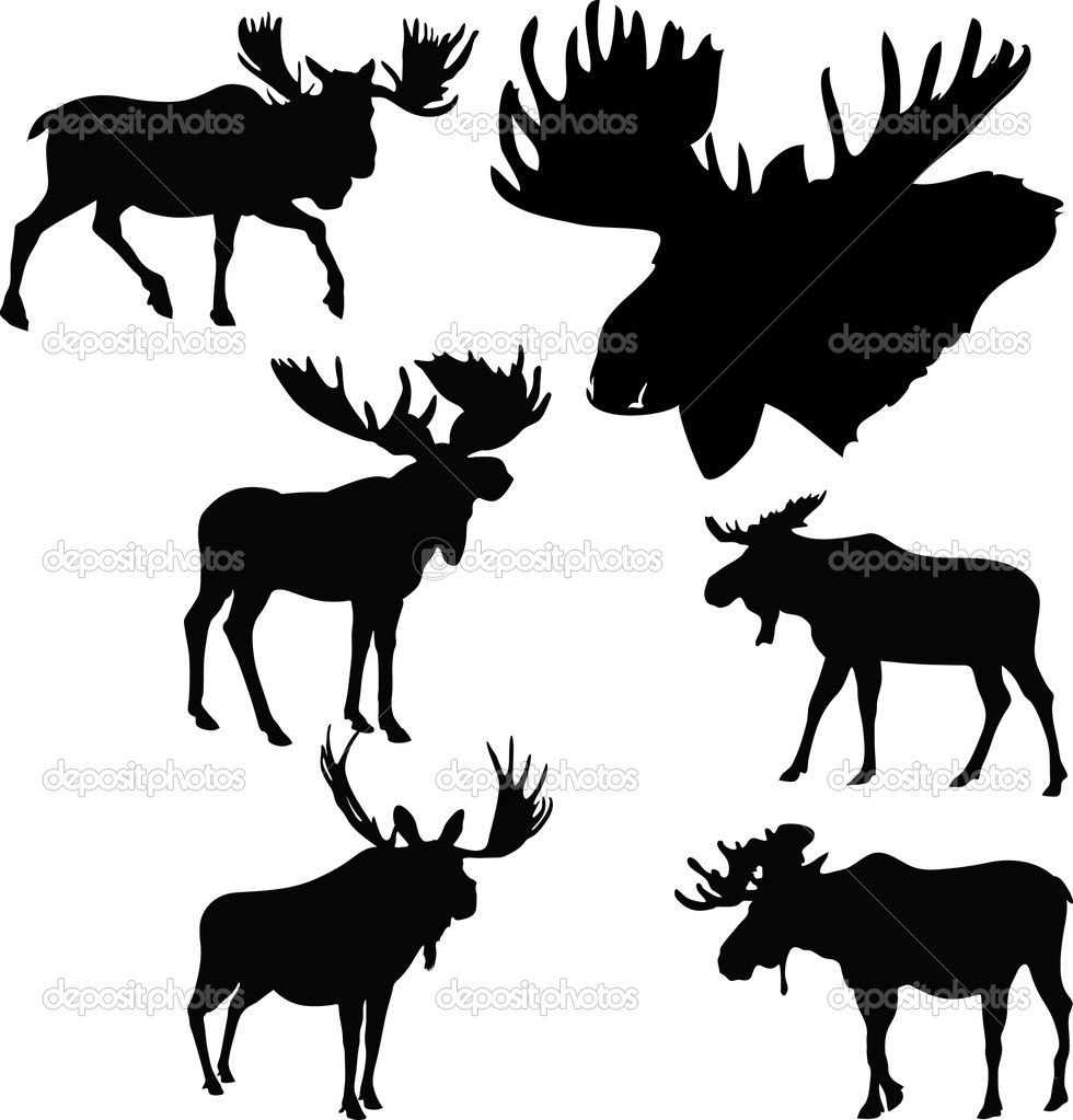 moose silhouettes moose antlers silhouette google search allegories 7551