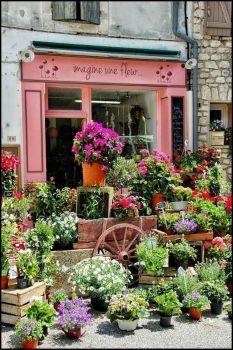 flower shop (260 pieces)