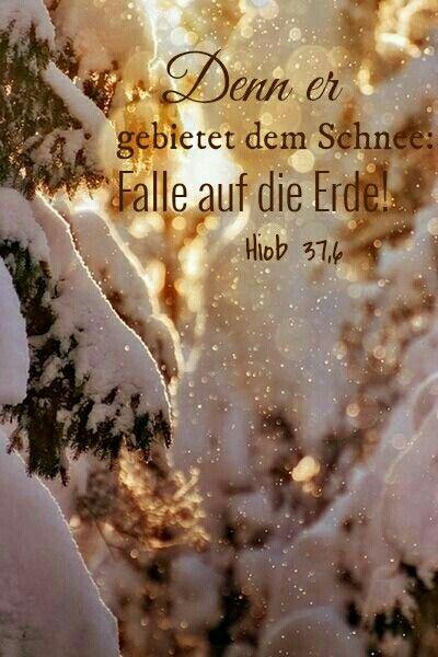 Hiob 37,6 | Zitate/Bibelverse | Pinterest | Bibelverse und Sprüche