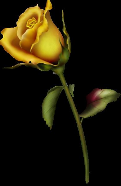 Yellow Rose Bud Art Clipart Yellow rose tattoos, Rose