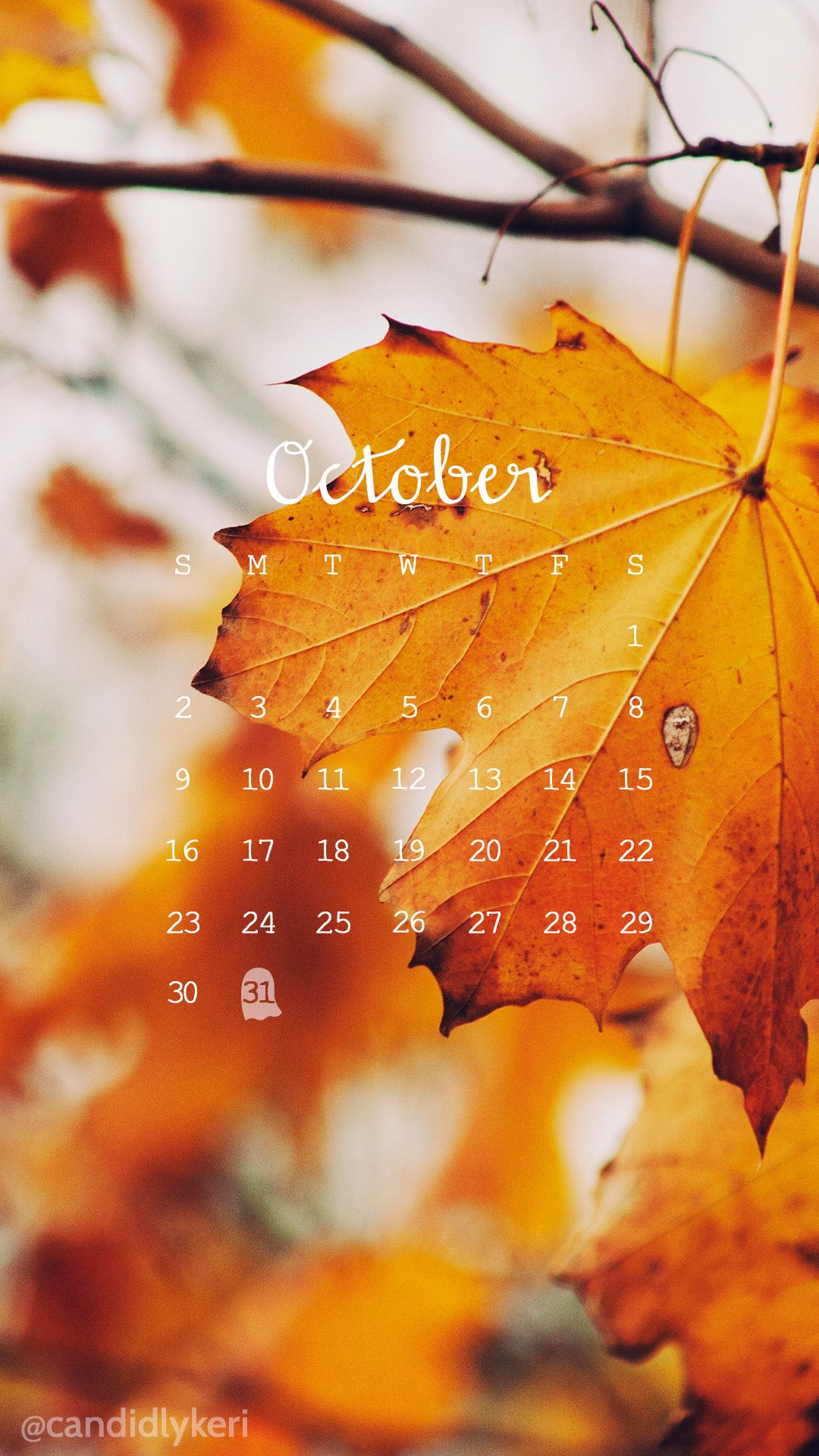 Fall leaves photo October calendar 2016 wallpaper you can