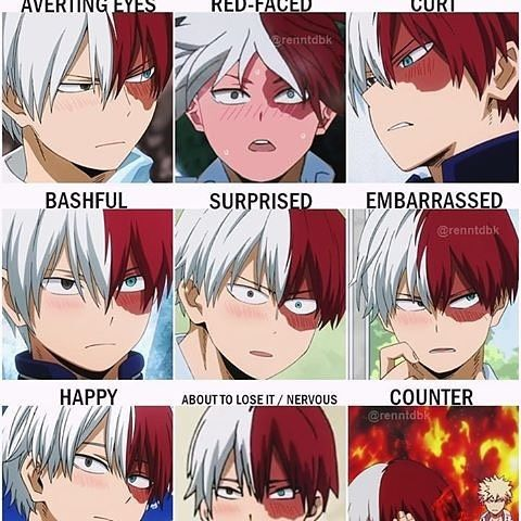 Which is your favorite blushing Shouto?