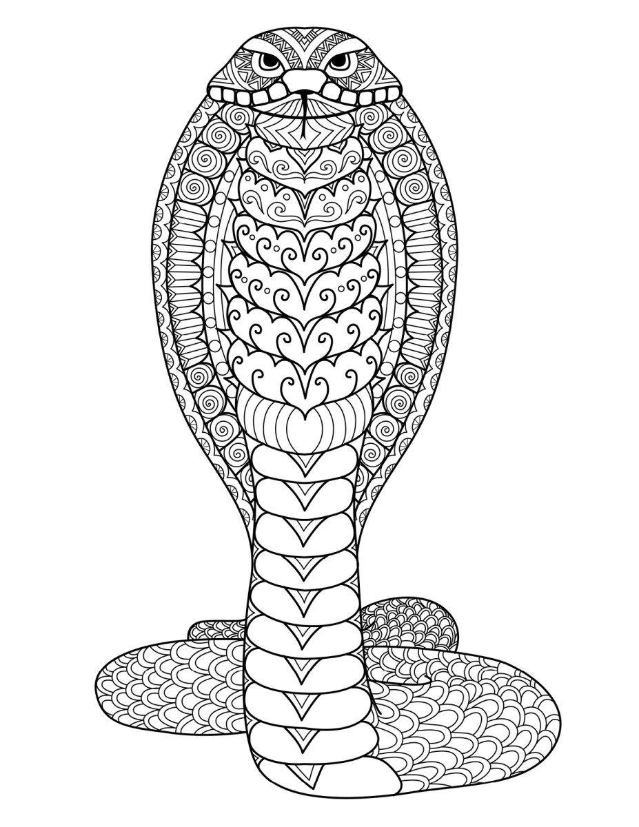 Coloriage Gratuit Serpent Cobra A Imprimer Par Bimbimkha Doodle