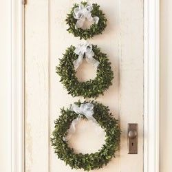 3 wreaths are better than 1... cute.