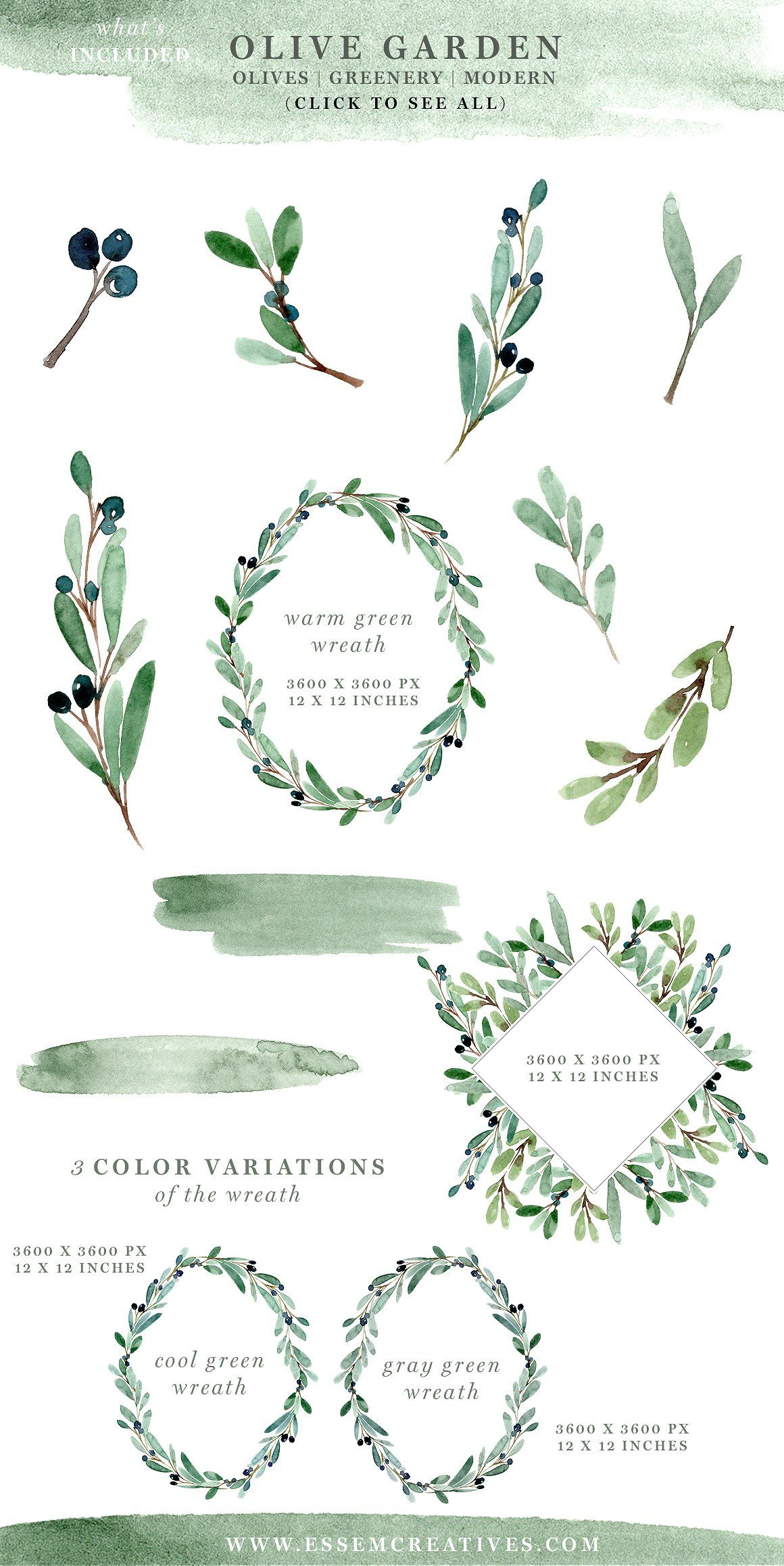 Watercolor Olive Branch Clipart, Rustic Greenery Wedding ...