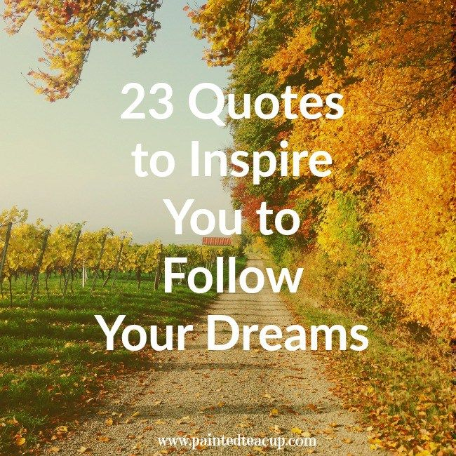 Quotes About Following Your Dreams Custom 23 Inspiring Quotes To Encourage You To Follow Your Dreams