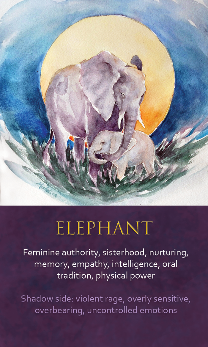 Image Result For Elephant Spirit Animal My Twin Animals