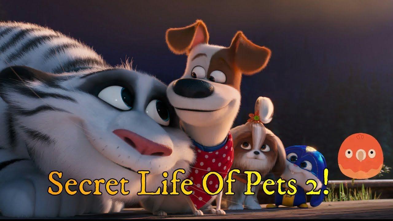 Secret Life Of Pets 2 Movie Review Secret Life Of Pets Secret Life 2 Movie