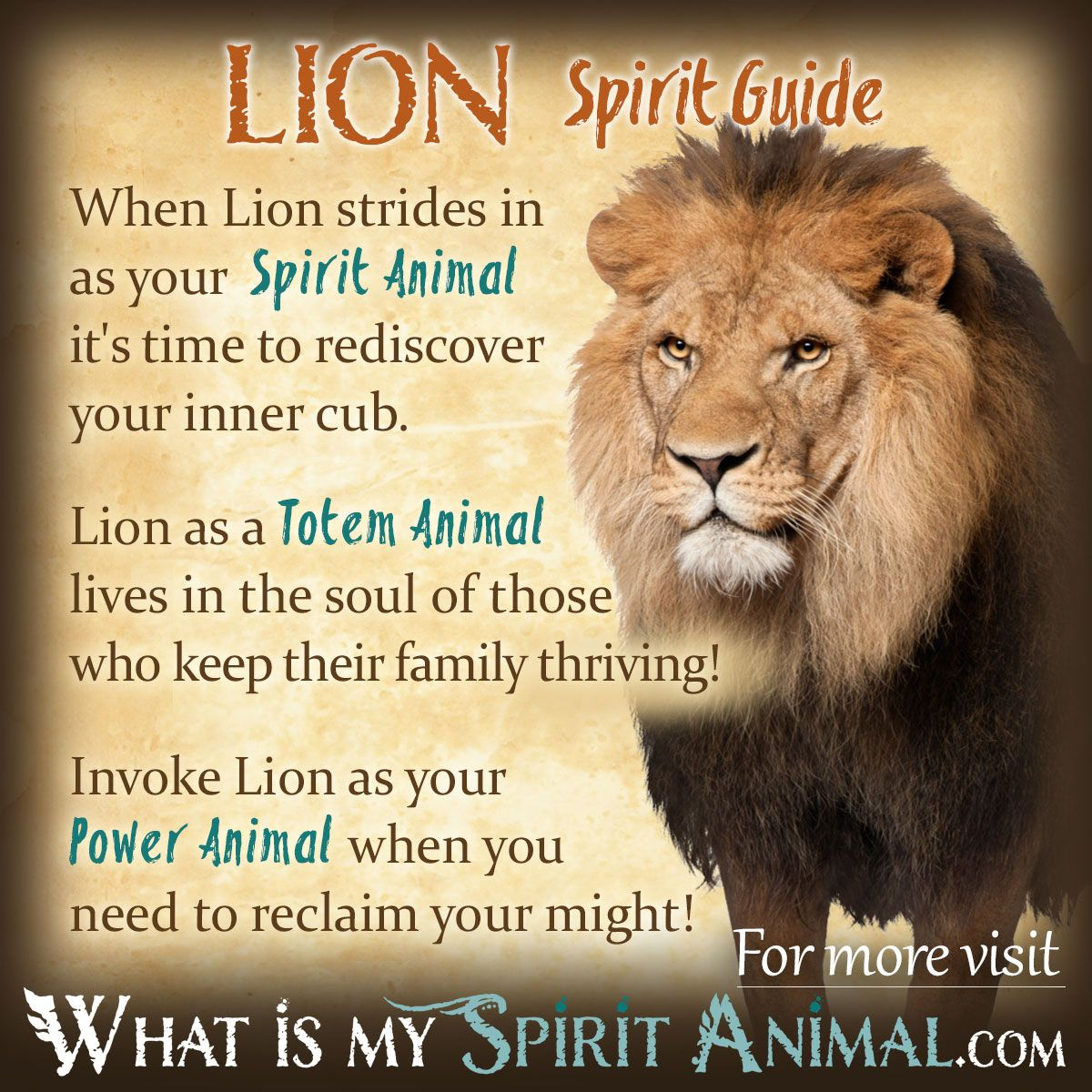 Lion Symbolism & Meaning | Misc. | Spirit animal quiz ...