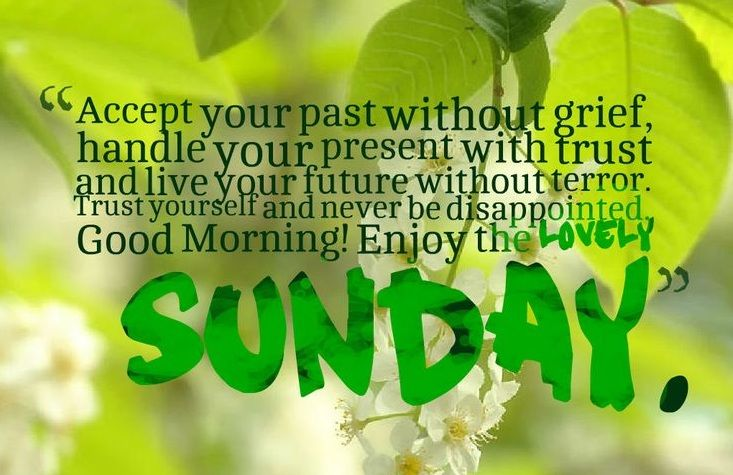 Sunday Good Morning Wishes Good Morning Sunday Messages Good