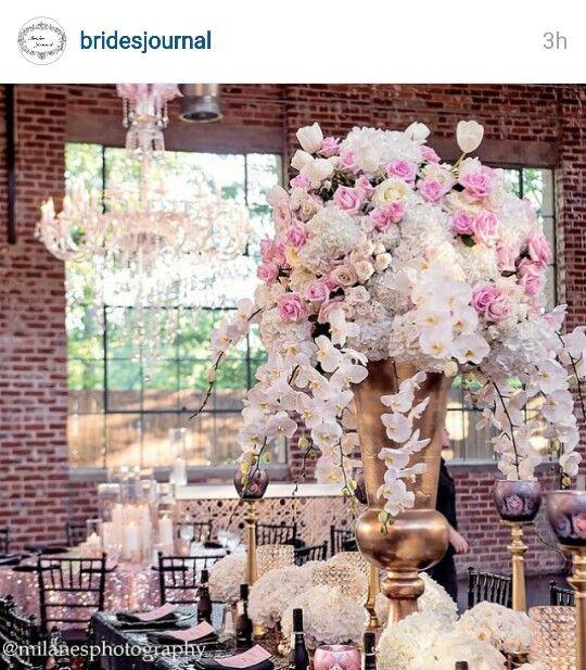 Beautiful photo I saw on instagram.