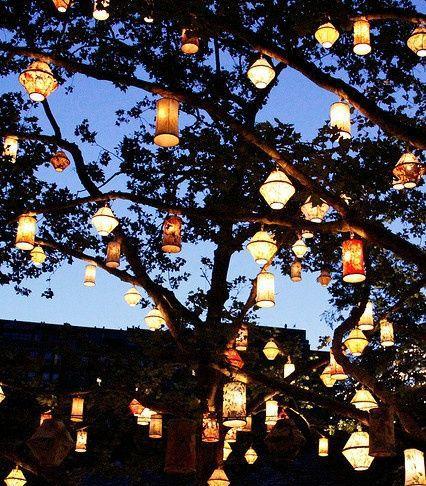 Lanterns In An Oak Tree In Backyard Love Home Sweet