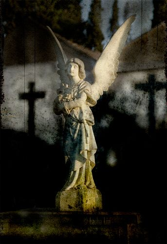 Cemetery Angel - cross shadows are cool