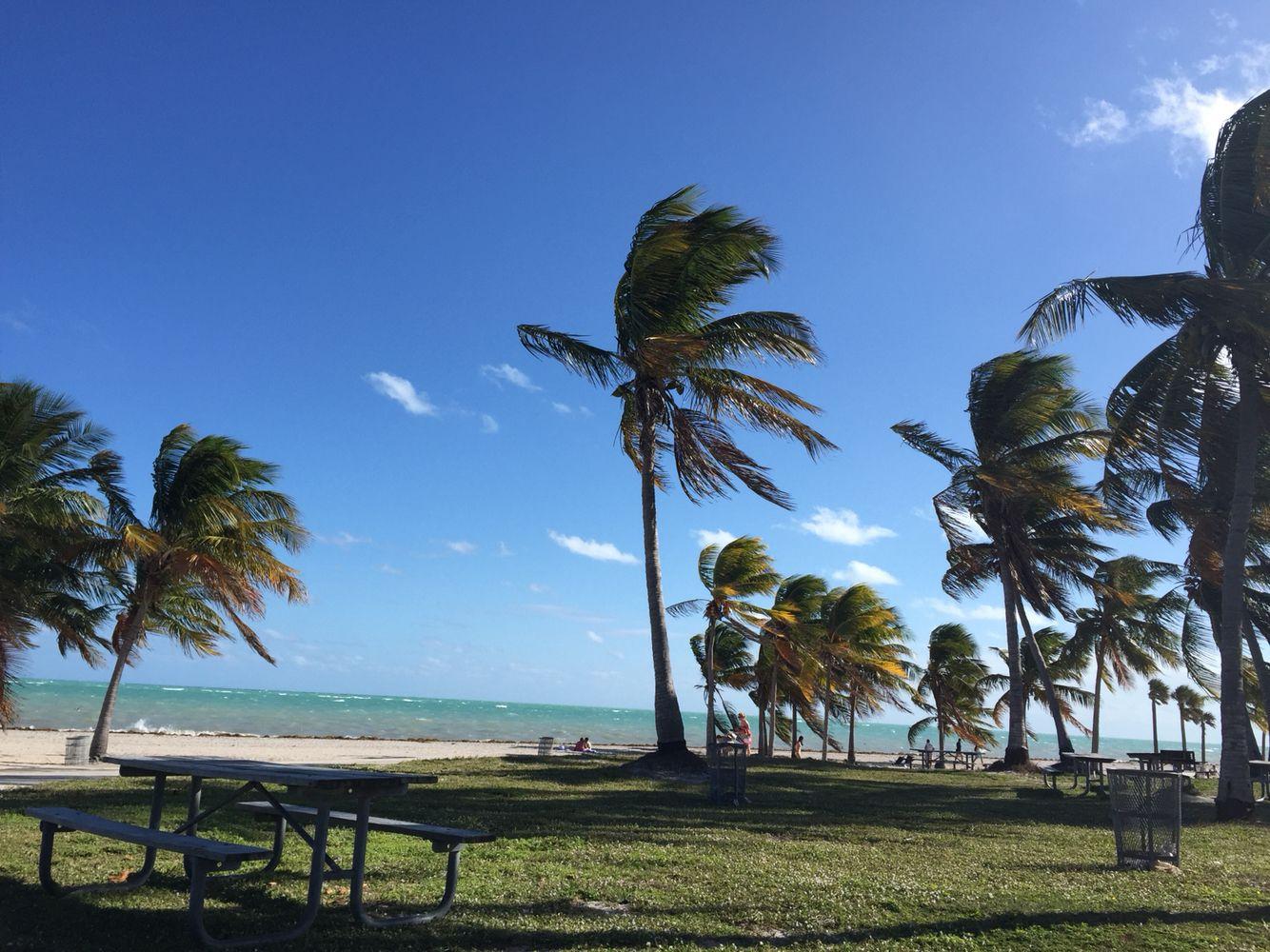 Playa De Los Cocoteros Key Biscayne Playa Cocotero