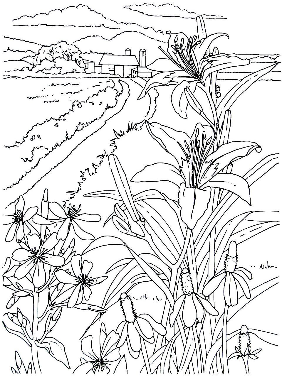 Corn And Flowers Coloring Page