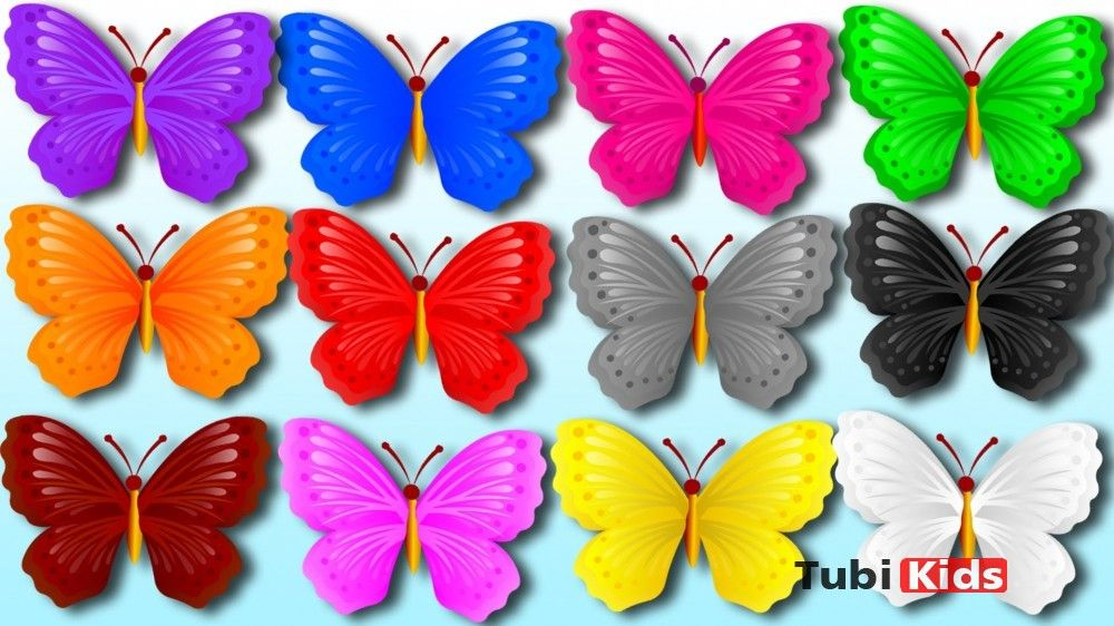 Colors-for-Kids-Learning-Colours-with-Color-Butterfly-Colors ...