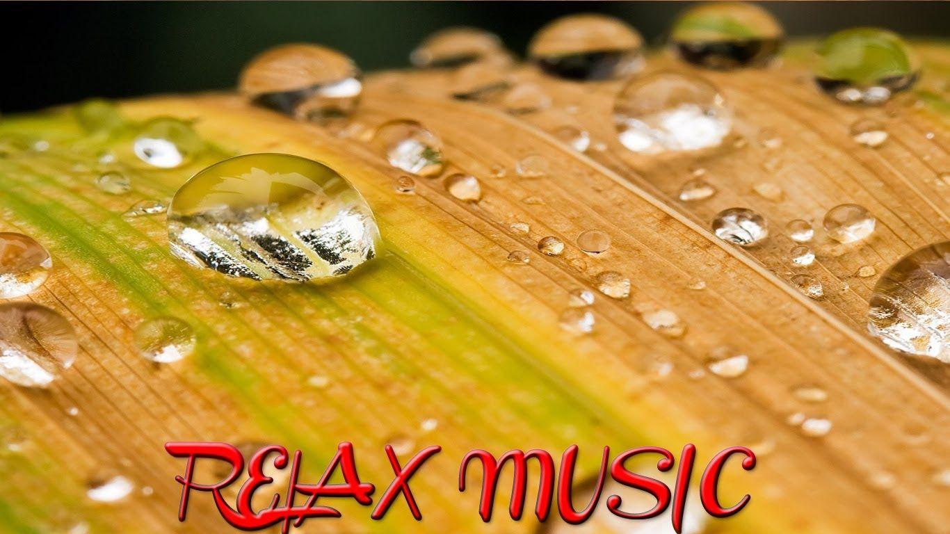 水和放松音乐新,放松的沉思  SD NATURALEZA, MUSICA  RELAX  MUSIC, RELAJANTE, RELAXING