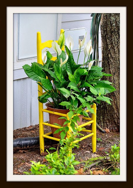 Puppy Paths: Lake Hickory RV Resort's Flowers Revisited!! My yellow chair.  I need to paint the pot red!