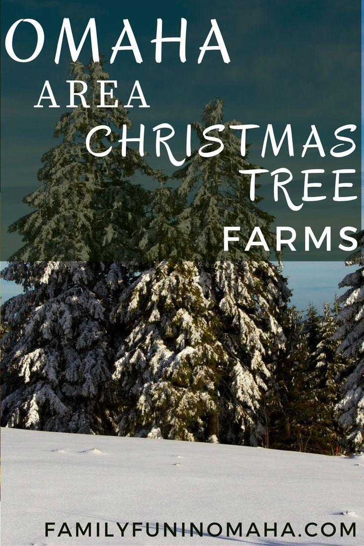7 Delightful Christmas Tree Farms Near Omaha Family Fun In Omaha Christmas Tree Farm Tree Farms Christmas Holiday Travel