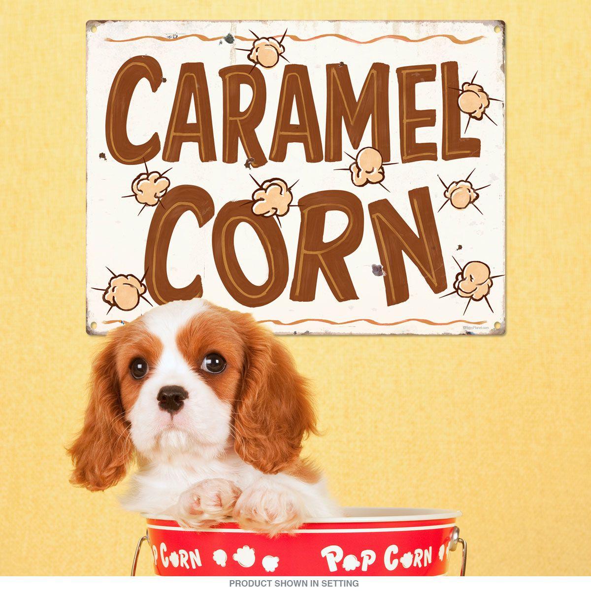 Caramel Corn State Fair Food Metal Sign | Fair foods, Caramel corn ...