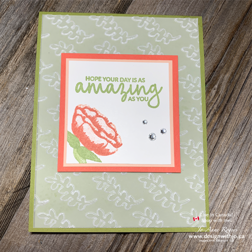 dry embossing vellum birthday card with images