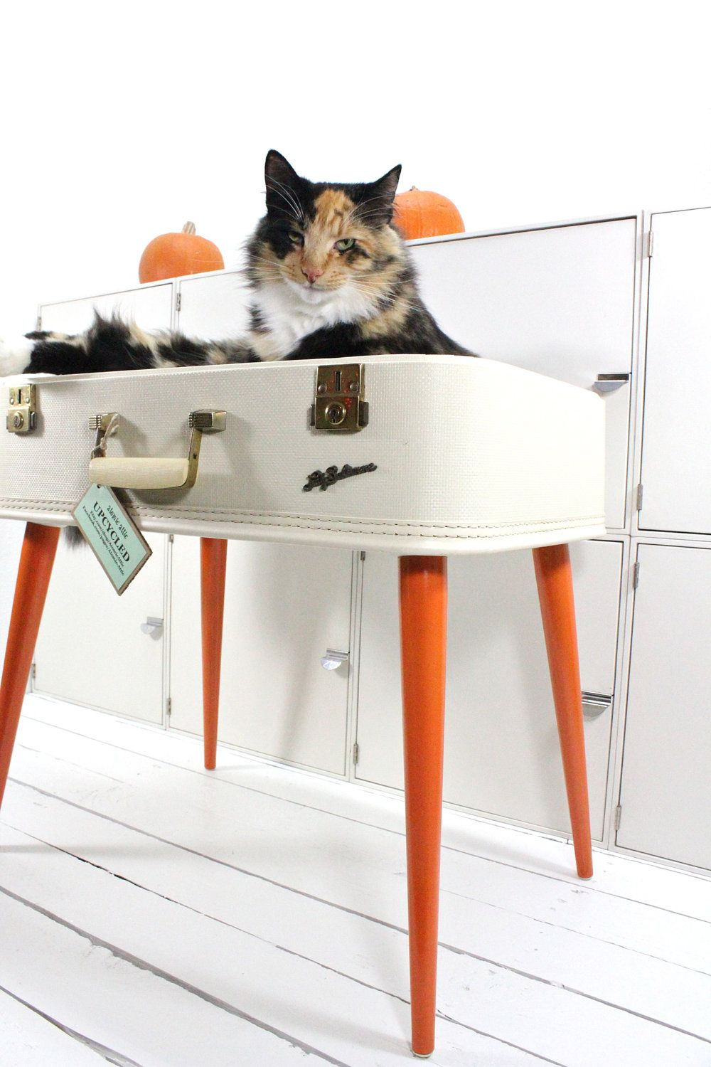 Upcycled white suitcase pet bed midcentury legs, by