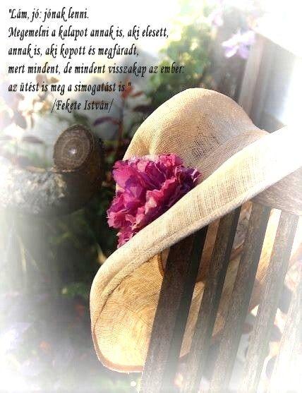 idézetek versek gondolatok képeken Pin by Valéria Oroszné Czomba on Versek, idézetek, gondolatok