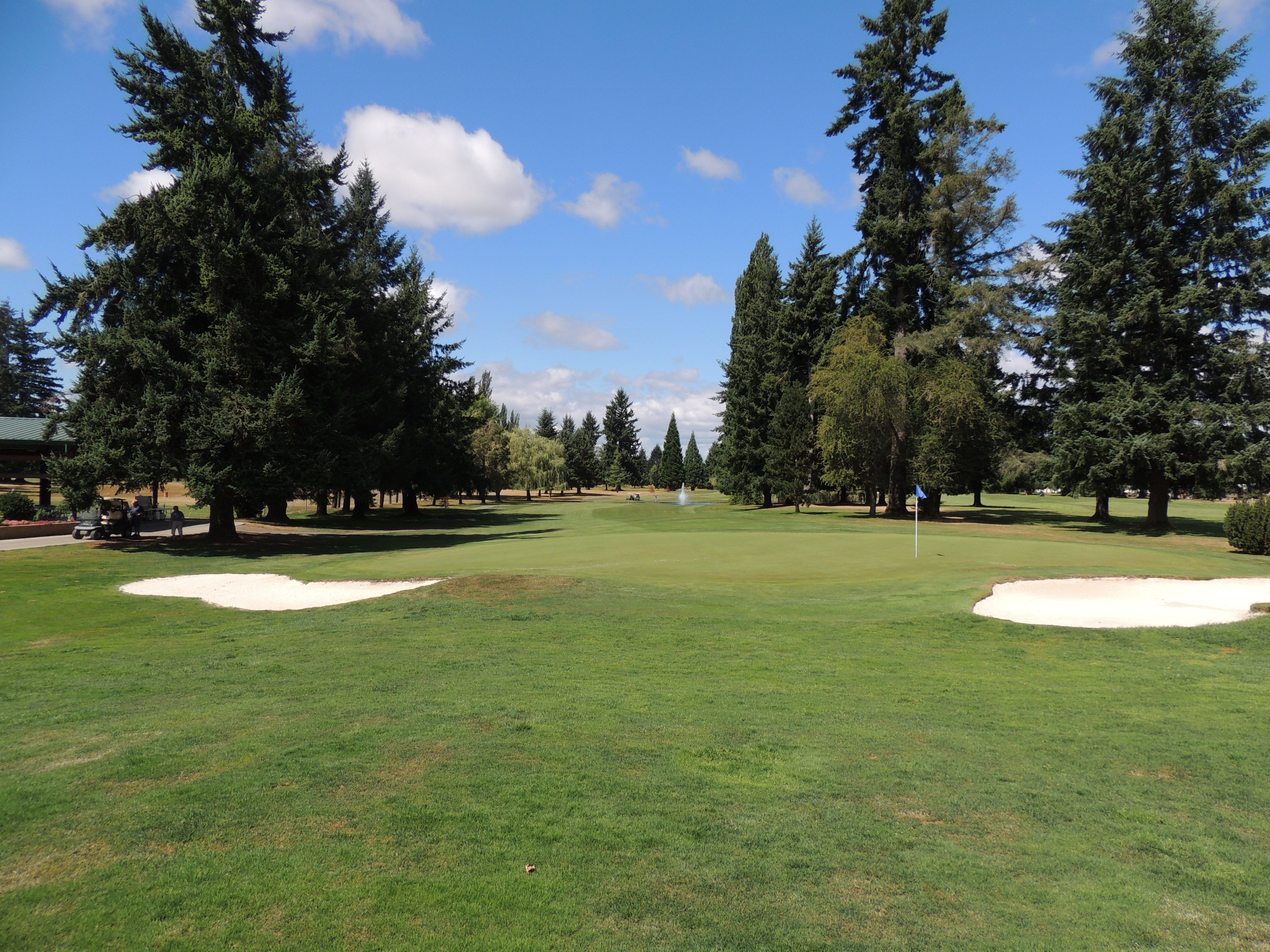 35+ Centralia golf information