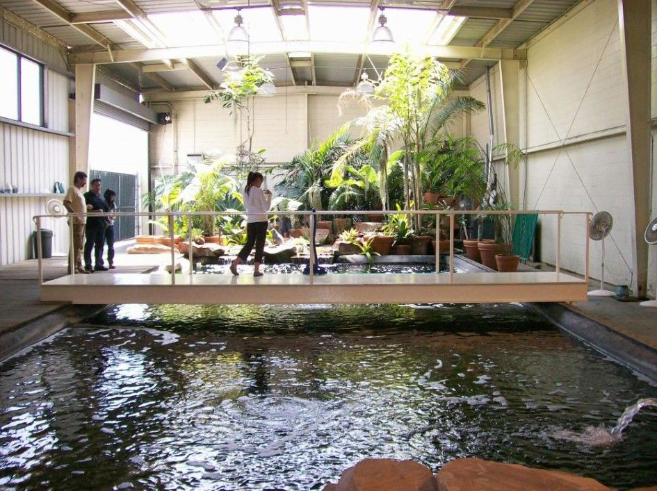Interior design indoor fish pond design with small garden for Indoor garden pool