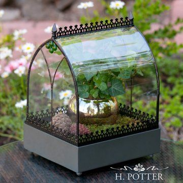 H. Potter Old World Wardian Case Terrarium - Available at Linton's Enchanted Gardens
