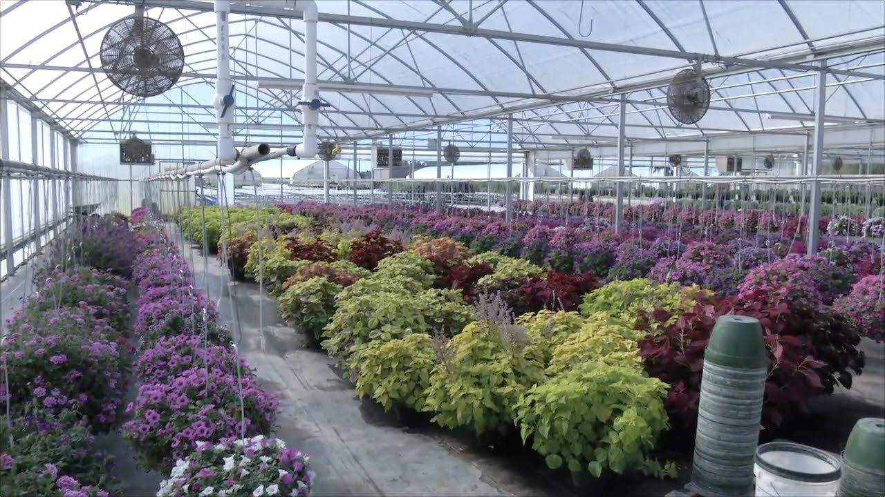 Thanks to the work of county farm plant company consumers - Atlanta farm and garden by owner ...